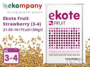 Добриво Ekote Fruit Strawberry (3-4 місяці) 6125FF, 25kg